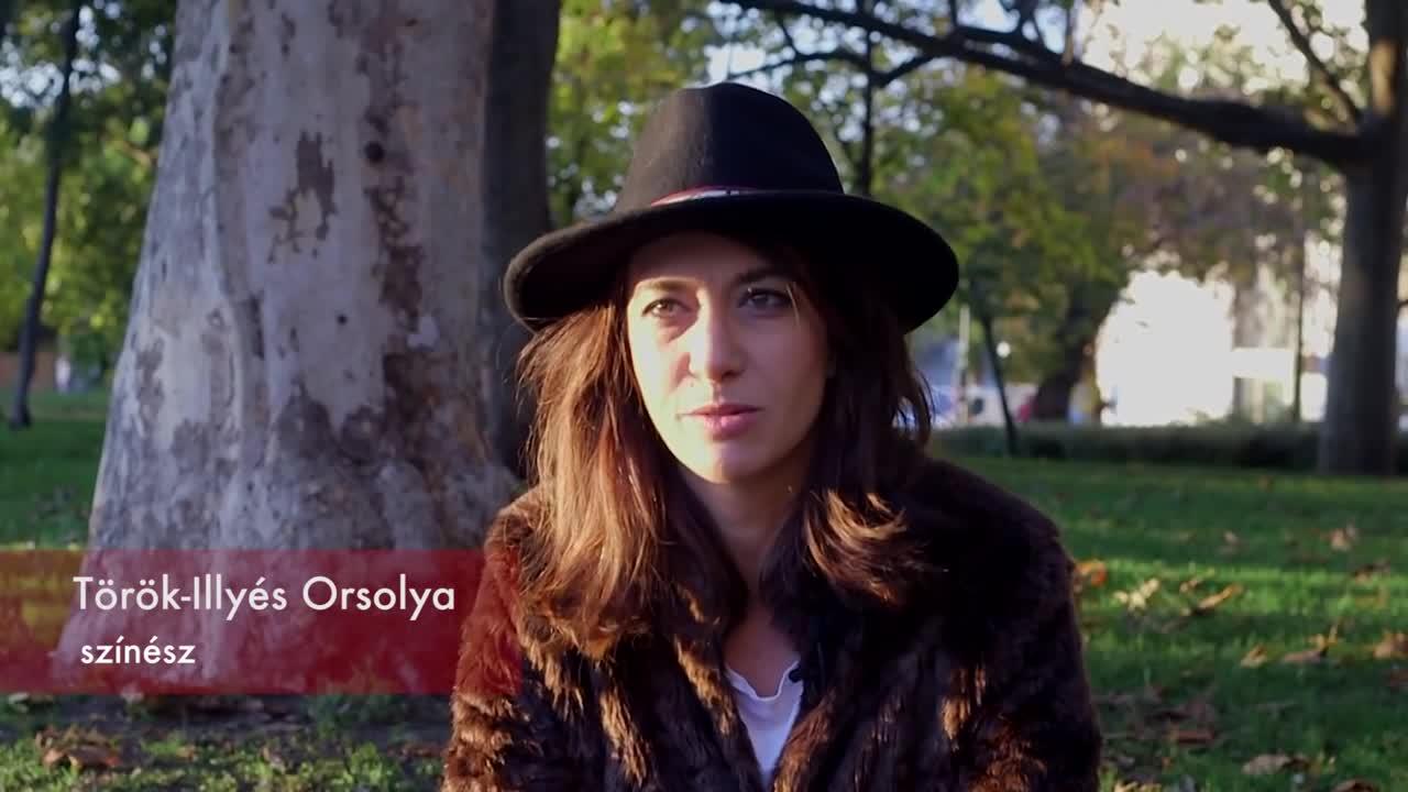 Török-Illyés Orsolya ajánlója